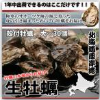牡蠣大30個バナー