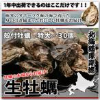 牡蠣特大30個バナー